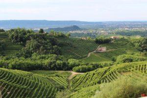 italy, treviso, hills